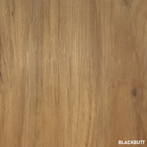 Hybrid - Blackbutt